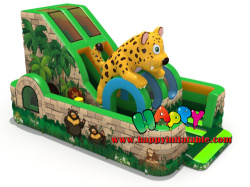 Leopard Obstacle Course With Slide